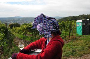 Weinwanderung-2